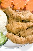 Filet Of Fish Breaded Nicaragua