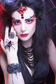 image of black widow spider  - Black widow - JPG