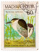 Stamp Printed In Hungary Shows Black-crowned Night Heron