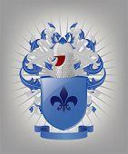 The Heraldic Arms