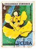 Stamp Printed In The Cuba Shows Oncidium Leiboldii, Orchid
