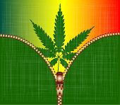 Zipper Cannabis Leaf