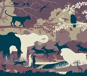 Colorful editable vector illustration of wildlife diversity