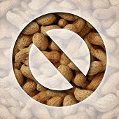 image of bans  - No peanuts and a ban on peanut or nut ingredients for allergy reasons as a food prohibition concept with the natural snack behind a ban icon as a safety symbol of avoiding allergic reaction - JPG