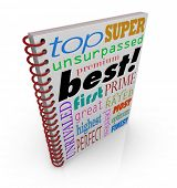 Best Word 3D Book Cover Praise Acclaim Review