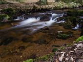 Harz Mountain Stream