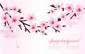 Spring background of a blossoming tree branch with spring flowers. Vector illustration.