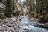 Water Flows In The Rockies, Alberta, Canada
