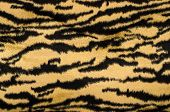 Brown and black tiger pattern.