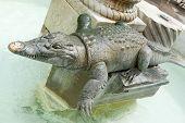 Crocodile Statue In Nimes