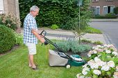Dutch Senior Mowing Lawn