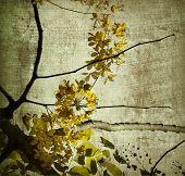 gelbes Grunge Kerala blossom