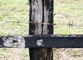 Fence Thorn Wire On Wood Stud