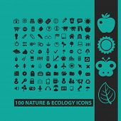 100 nature, ecology, environment icons, signs, symbols, objects, illustrations set. vector