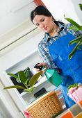Younge woman looking after houseplant at home