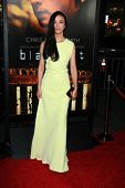 LOS ANGELES - JAN 8:  Tang Wei at the