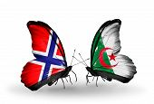 Two Butterflies With Flags On Wings As Symbol Of Relations Norway And  Algeria