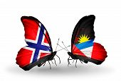 Two Butterflies With Flags On Wings As Symbol Of Relations Norway And  Antigua And Barbuda