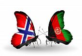 Two Butterflies With Flags On Wings As Symbol Of Relations Norway And Afghanistan