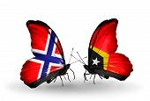 Two Butterflies With Flags On Wings As Symbol Of Relations Norway And East Timor