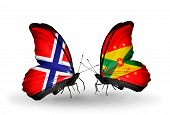 Two Butterflies With Flags On Wings As Symbol Of Relations Norway And Grenada
