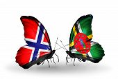 Two Butterflies With Flags On Wings As Symbol Of Relations Norway And Dominica