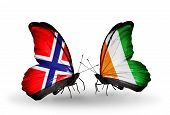 Two Butterflies With Flags On Wings As Symbol Of Relations Norway And Cote Divoire