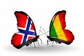 Two Butterflies With Flags On Wings As Symbol Of Relations Norway And  Mali