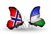 Two Butterflies With Flags On Wings As Symbol Of Relations Norway And Uzbekistan
