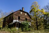 foto of house woods  - Abandoned house in the woods of New Jersey - JPG