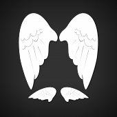 Wings , Vector Illustration