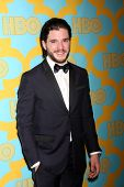 LOS ANGELES - JAN 11:  Kit Harrington at the HBO Post Golden Globe Party at a Circa 55, Beverly Hilton Hotel on January 11, 2015 in Beverly Hills, CA