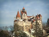 View Of Bran Castle In Winter Season