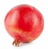 Round Juicy Ripe Pomegranate