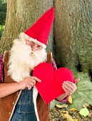 Romantic garden gnome showing a red heart
