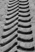 Tireprint