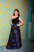 LOS ANGELES - JAN 11:  Kate Flannery at the HBO Post Golden Globe Party at a Circa 55, Beverly Hilton Hotel on January 11, 2015 in Beverly Hills, CA