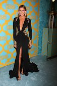 LOS ANGELES - JAN 11:  Renee Bargh at the HBO Post Golden Globe Party at a Circa 55, Beverly Hilton Hotel on January 11, 2015 in Beverly Hills, CA