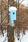 Birdhouse With Snowdrift In Urban Park