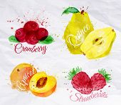 foto of apricot  - Fruit set drawn watercolor blots and stains with a spray cranberry - JPG