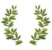 stock photo of olive shaped  - Green olive wreath - JPG