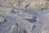 stock photo of marshes  - texture of gray marsh soil or bog for abstract natural backgrounds - JPG