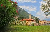 stock photo of lagos  - pictorial village gargnano lago di garda with oleander and church - JPG