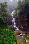 image of rainy season  - Tropical downpour mountains of Sri Lanka in the rainy season - JPG