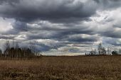 image of cloudy  - Field under cloudy sky in early spring - JPG