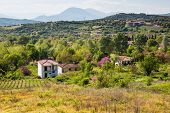 pic of farm-house  - Rural spring landscape in Greece with farm house vineyards blossoming trees and mountains on the background - JPG