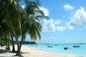Saona Island Beach1