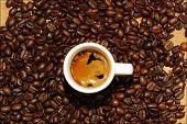 coffee cream on fresh beans