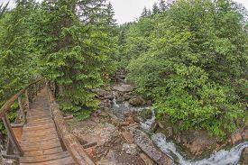 pic of distort  - View of wooden bridge over the river  - JPG
